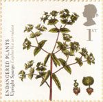 Plants - UK Species in Recovery 1st Stamp (2009) Upright Spurge