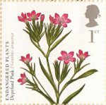 Plants - UK Species in Recovery 1st Stamp (2009) Deptford Pink