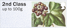 Post & Go: Winter Greenery - British Flora 3 1st Stamp (2014) Common Ivy
