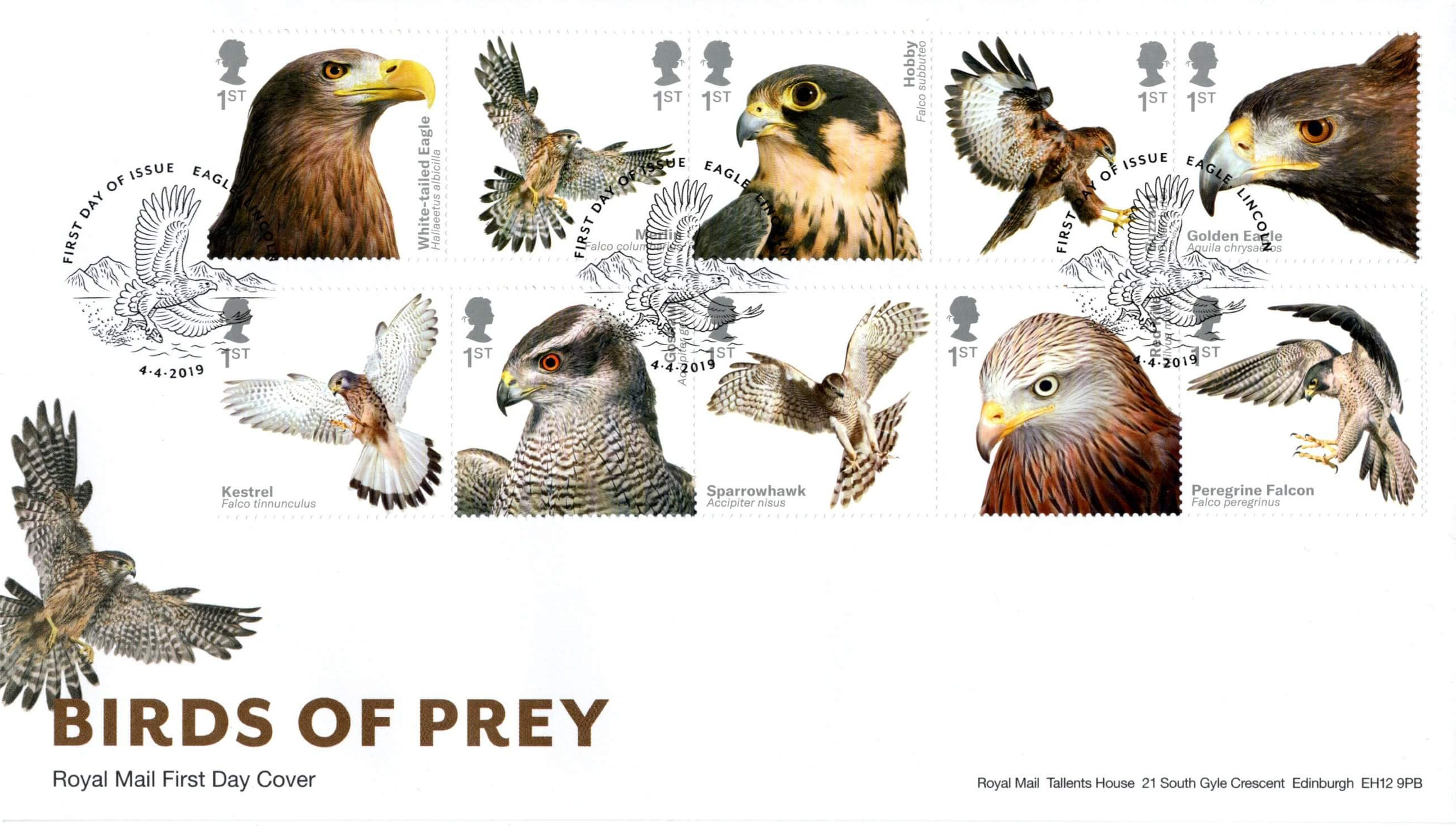 Birds Of Prey 2019 Collect Gb Stamps
