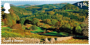Forests £1.55 Stamp (2019) Coed y Brenin